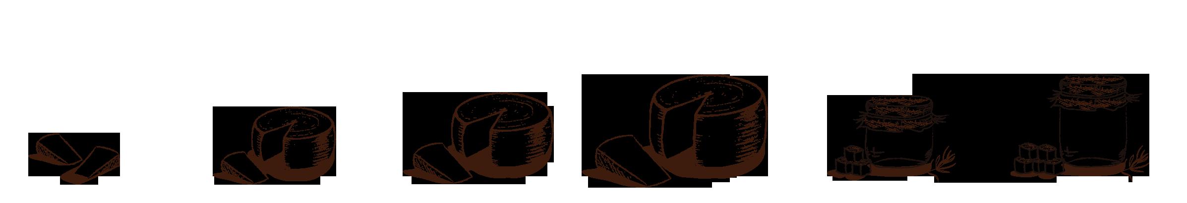 quesos-ilustrados